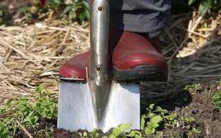 Какие лопаты лучше всего подойдут для проведения садово-огородных работ