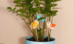 Как сделать декор цветочных горшков своими руками: использование подручных средств